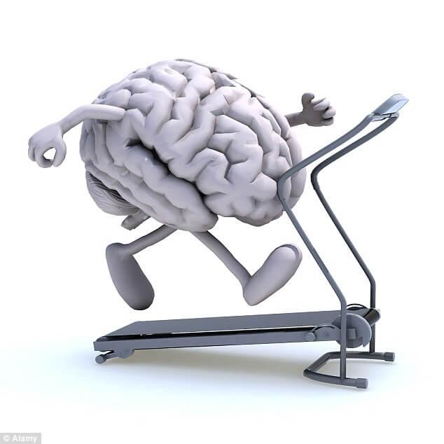 A Motivação e o Direcionamento Psicológico (semelhanças com eleições)