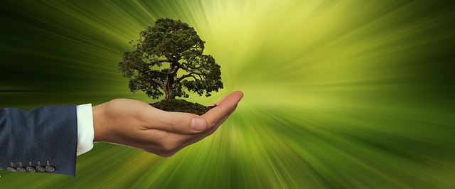 O Direito Ambiental a Caminho da Sustentabilidade